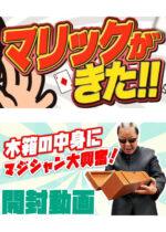 Mr.マリック公式チャンネル「マリックがきた!!」